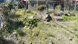 仙台 除草剤散布